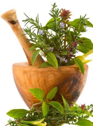 medicine_herbs-in-pestle